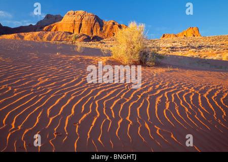 Sand dunes on an arid landscape, Glen Canyon National Recreation Area, Utah, USA - Stock Photo