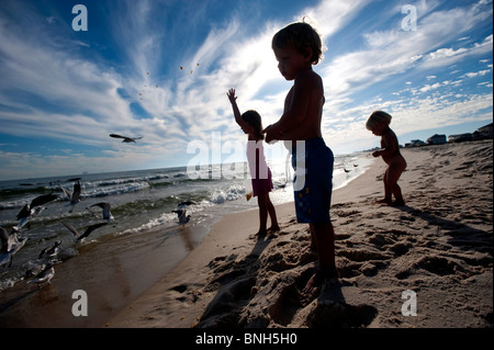 Three children are silhouetted against a cloudy blue sky as they feed seagulls on the beach. - Stock Photo