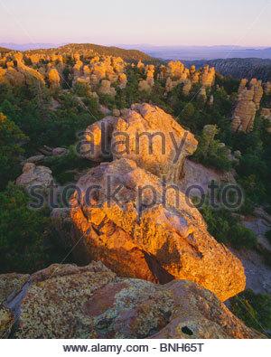 'Standing rocks' at sunrise in Heart-of-Rocks area. [Chiricahua National Monument]  Arizona. - Stock Photo