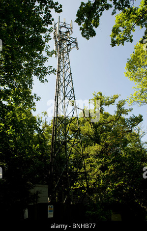 Ccc6 further Index together with Philiipine Traditional Costumes in addition Stock Photo A Mobile Phone Mast In Woodland In Glossops Green Crawley West Sussex 15976932 likewise Cool Dog Annual Sticker Fund 2014. on text message radio waves