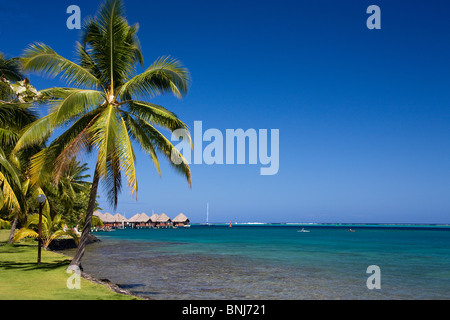Tahiti Tahiti Nui Island Papete city sea Intercontinental Resort palms waters travel tourism holiday vacation Pacific - Stock Photo