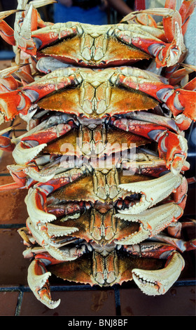 Dungeness crabs on display for sale at Pike Place Market in