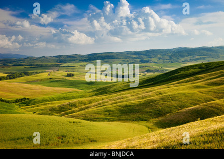 Tuscan countryside near San Quirico in the Val d'Orcia, Tuscany Italy - Stock Photo