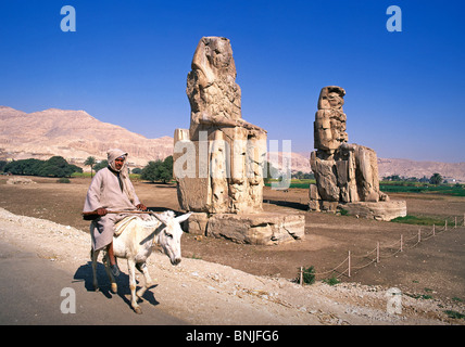Egypt March 2007 Luxor city Colossi of Memnon ancient historic culture donkey man riding - Stock Photo