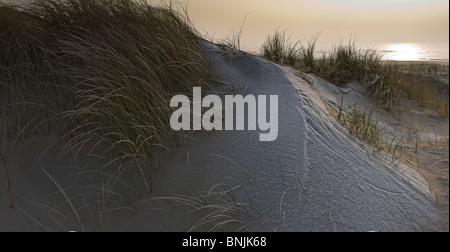 Dunes frost areas Egmond aan Zee Noord-Holland Netherlands Landscape Winter Beach scenery coast shore sandy beach - Stock Photo