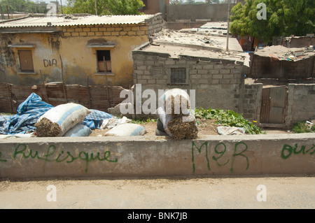 Africa, Senegal, Dakar. Capital city of Dakar. Livestock hay sold in bags on the side of the street in typical neighborhood. - Stock Photo