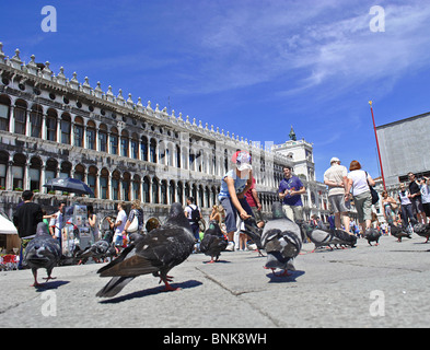 A boy feeds pigeons in St Marks Square, Venice, Italy - Stock Photo