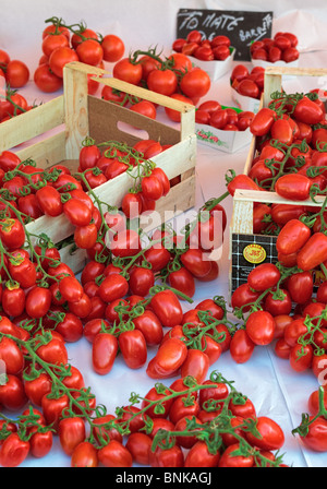 Fresh Italian tomatoes at the market in old town Nice ,France. This market is called 'Marche aux Fleur' or 'Cours - Stock Photo