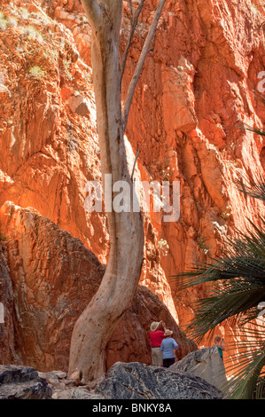 Standley Chasm, West MacDonnell National Park, near Alice Springs, Northern Territory, central Australia - Stock Photo