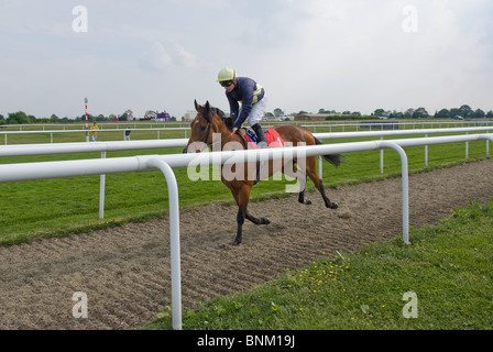 Tadhg O'Shea on Liel at Doncaster Racecourse - Stock Photo