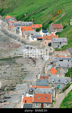 Crovie, a small village on a narrow ledge along the sea comprising a single row of houses in Aberdeenshire, Scotland, - Stock Photo