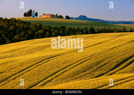 Early morning sunlight on the Cappella di Vitaleta and the rolling fields of Tuscany near San Quirico d'Orcia - Stock Photo