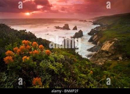 Big Sur coast, California, USA. - Stock Photo