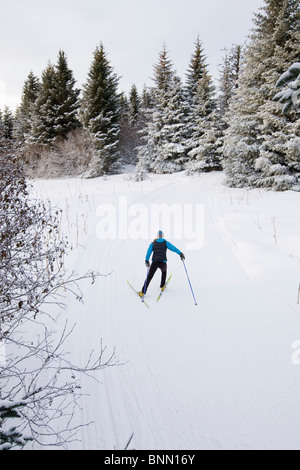 Woman Nordic skiing on the Baycrest Ski Trails in winter near Homer, Kenai Peninsula, Alaska - Stock Photo