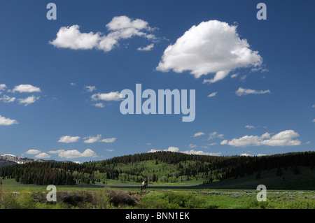 Guest's Horseback riding Flying A Ranch Guest Ranch Bondurant Wyoming USA hills forest - Stock Photo
