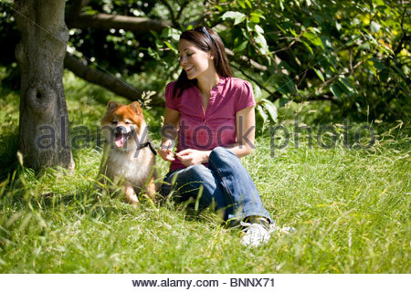 A young woman sitting on the grass with her dog in summertime - Stock Photo