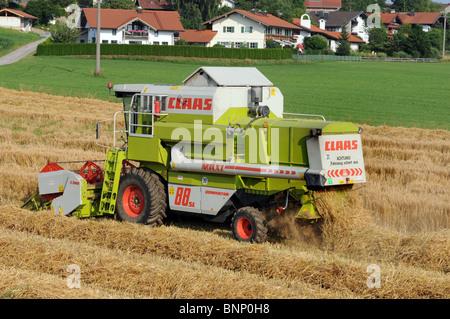 Combine harvesting barley in Bavaria - Stock Photo