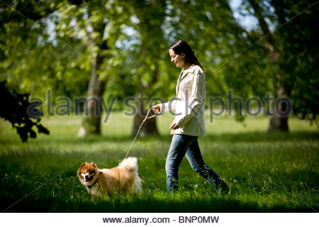 A young woman walking her dog - Stock Photo