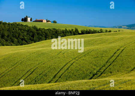 Cappella di Vitaleta and the rolling fields of Tuscany near San Quirico d'Orcia, Italy - Stock Photo