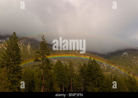 Rainbow appears over trees as rain shower passes through the north end of Lake Tahoe, Nevada, USA. - Stock Photo