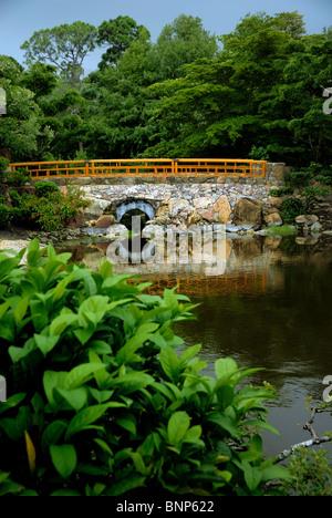 Morikami Museum and Japanese Gardens, Florida, USA Stock Photo ...