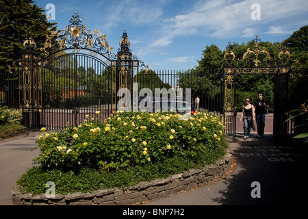 Queen Mary's Gardens in Regents Park. In the Inner Circle is a Rose Garden with hundreds of varieties. London. UK. - Stock Photo