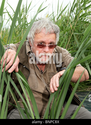 Bill Oddie hiding in amongst reeds at rainham marshes RSPB nature reserve. - Stock Photo
