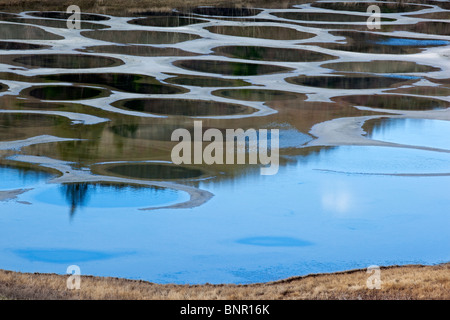 Saline rings in Spotted Lake, British Columbia, Canada. - Stock Photo