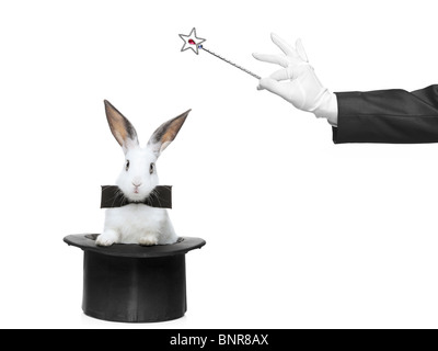 A rabbit in a hat and hand holding a magic wand - Stock Photo