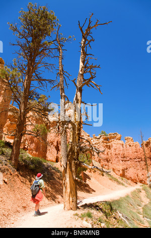 Hiking in Bruce Canyon - Stock Photo
