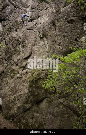 A lead climber on a rock face. - Stock Photo