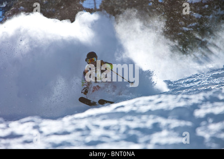 Male skier charges untracked powder on a sunny day in Utah. - Stock Photo