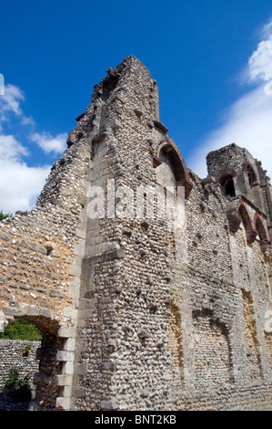 Wolvesey Castle (Old Bishop's Palace) Winchester Hampshire England, UK, GB. - Stock Photo
