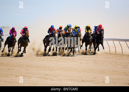 Horse racing in the outback at the Birdsville Cup races.  Birdsville, Queensland, AUSTRALIA. - Stock Photo
