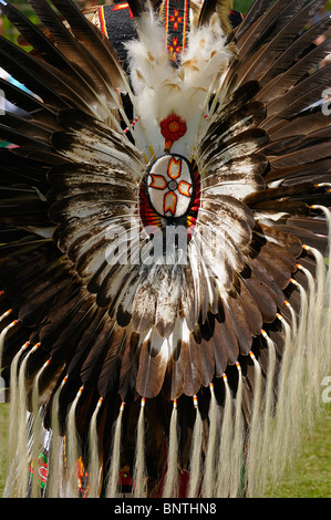 Eagle feather bustle on an elder Native Indian attending Six Nations Reserve Pow Wow Grand River Ontario Canada - Stock Photo