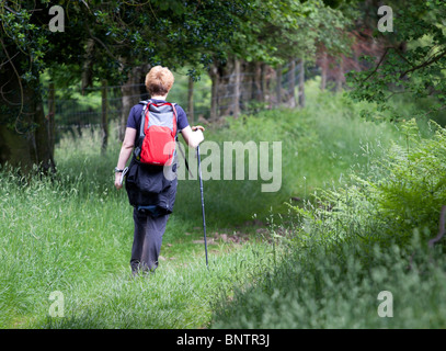 A female rambler/hiker walking along a grass track through a field in the Brecon Beacons, Wales, UK - Stock Photo