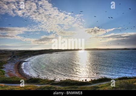 Pembroke Bay , north east coast, Guernsey, Channel Islands, UK, Europe - Stock Photo