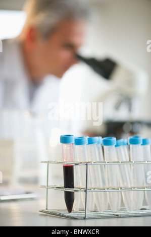 Vials in research lab - Stock Photo