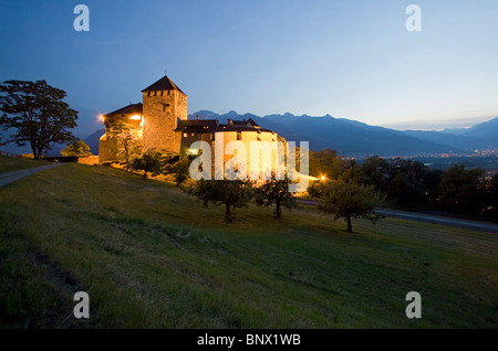 The castle of Vaduz, residence of the Prince of Liechtenstein - Stock Photo