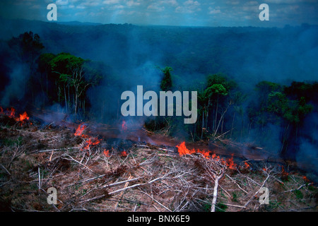 Rain forest afire at Jarí Forestal, Pará, Brazil. - Stock Photo