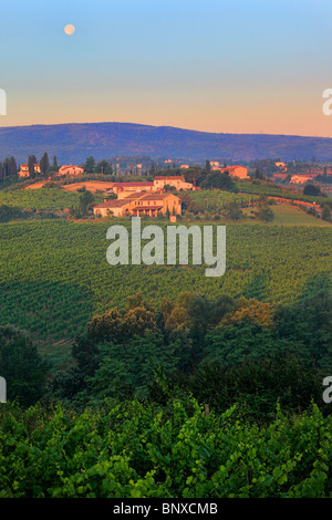 Wine is grown almost everywhere on the hills surrounding the Tuscan town of San Gimignano - Stock Photo
