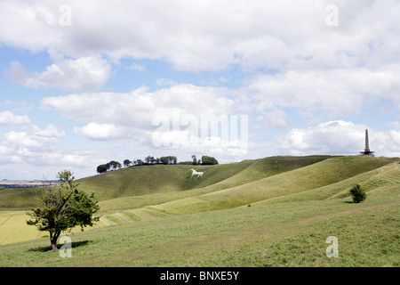 Views of the Lansdowne monument and the Cherhill White Horse, Wiltshire. - Stock Photo