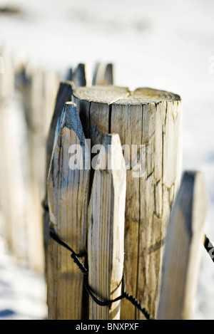 Wooden fence post - Stock Photo
