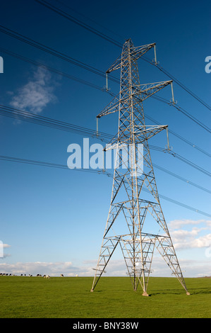 High Power electricity pylons crossing countryside in England - Stock Photo