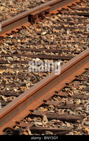 Train tracks in Alaska - Stock Photo