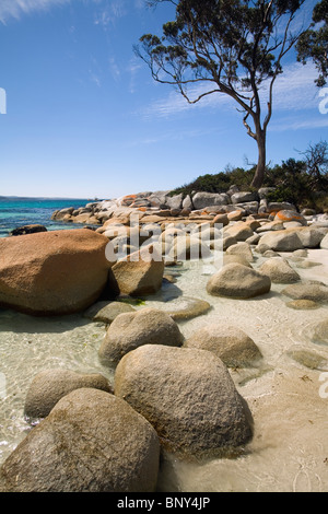 Rocks and beach part of the region of bay of fires for Landscaping rocks tasmania
