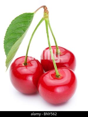 Three appetizing ripe cherries over white. - Stock Photo