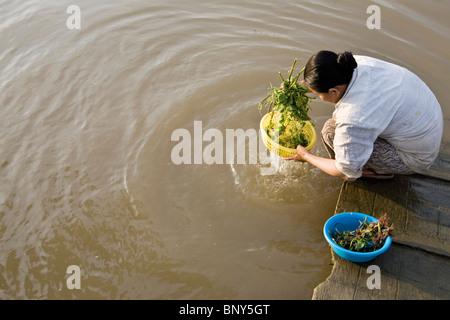 Woman washing vegetables in the Mekong River, Phong Hoa Village, Vietnam - Stock Photo