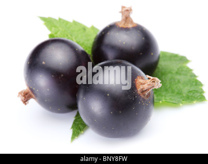 Three ripe beautiful currant berries with leaves over white. - Stock Photo
