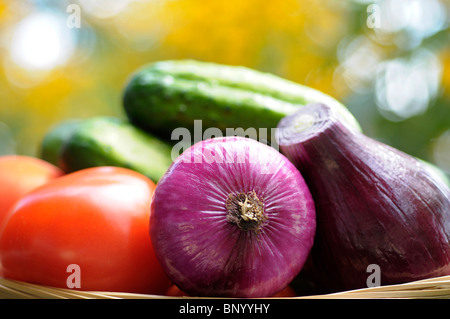 Vegetables, Raw - Red Onion, Cucumbers, Tomatoes - Stock Photo